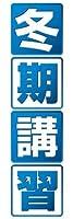 のぼり旗スタジオ のぼり旗 冬期講習002 通常サイズ H1800mm×W600mm