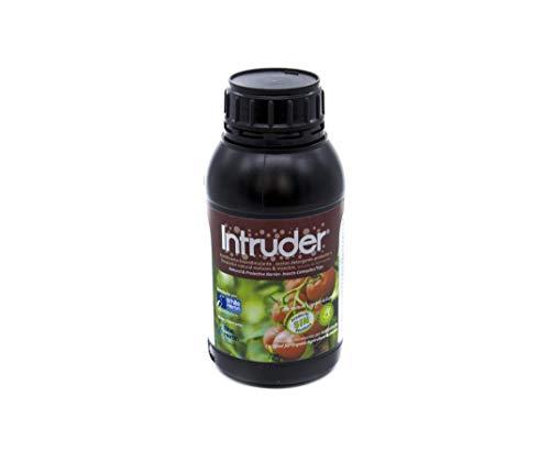INTRUDER®. Insectos/Oruga/Larvas/Pulgón; Bio-Protector-Fertilizante Especial. Plantas Interior-Exterior/Cultivos/Cultivos. Ecológico (650 m2)