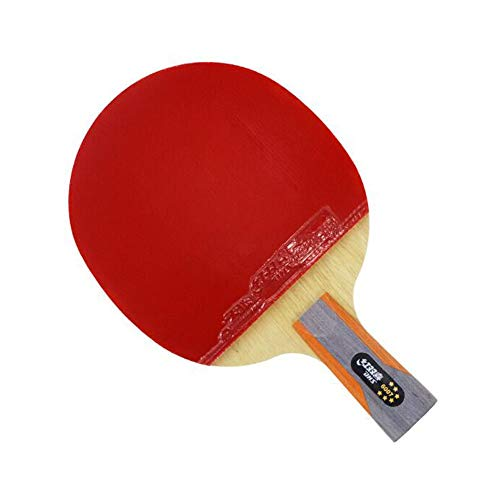 Lowest Price! Chengjinxiang Table Tennis Bat, Pen-Hold Double-Sided Long Reverse Plastic All-Around ...