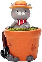 Cat Planter-Flowerpot Plant Pot Cute Cat Flower Planter Home Garden Mini Bonsai Cactus Succulent Pot Wedding Home Office Decoration