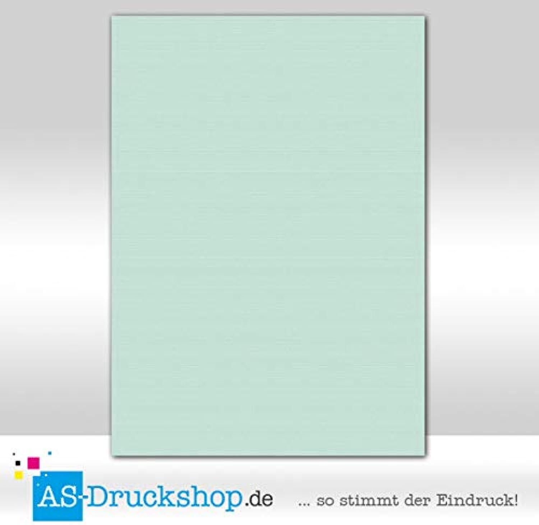 Farbiges Papier Papier Papier Schreibpapier - Mint   100 Blatt DIN A4   220 g-Papier B0794WX8YM    | Clever und praktisch  2fb863