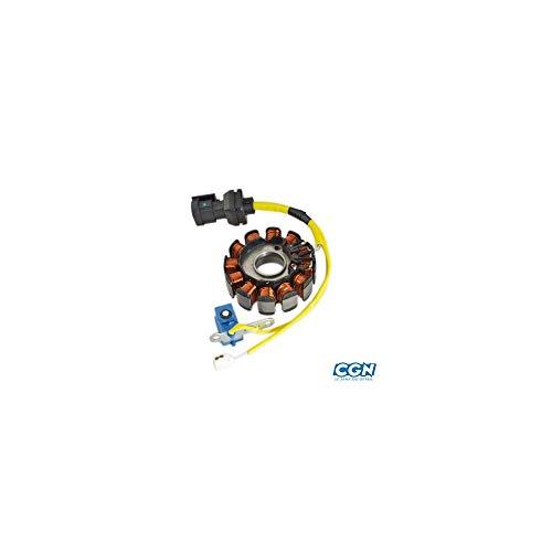 MOTODAK STATOR Maxi Scooter geschikt voor 125 Piaggio Motor Leader 12 Poles (828135/584690/833697)