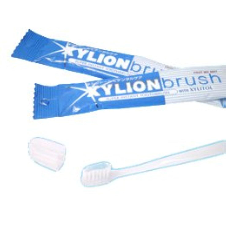 検出する実業家業界キシリオンブラシ XYLION brush 1本