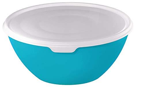 Rotho Caruba Bol 3L avec Couvercle, Plastique (PP) sans BPA, Bleu/Transparent, 3L (24,0 x 24,0 x 11,6 cm)