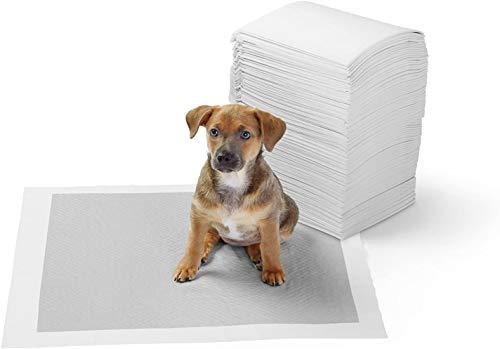 AmazonBasics - Tappetini igienici con carbone attivo per l'addestramento di cagnolini e altri animali domestici, misura standard, 80 pezzi