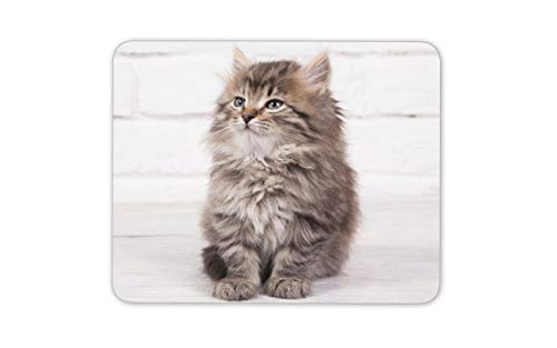 Fluffy Kitten Mouse Mat Pad - Cat Maine Coon Cute Pet Funny Computer Gift #15925