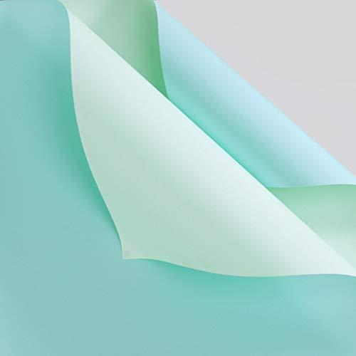 C-J-Xin Papel de Embalaje Bicolor, Color sólido Manual Origami Flower Shop Papel de Envoltura for Ramo Impermeable Papel de Regalo for el día de la Madre 20 Piezas Papel de Regalo