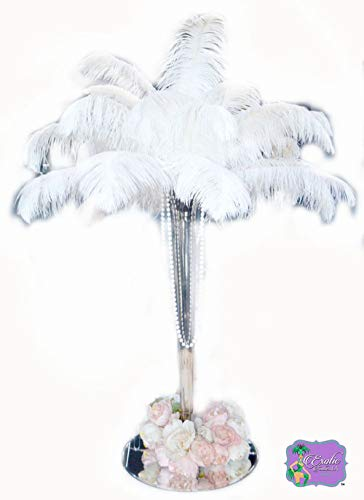 "Special Sale WHITE OSTRICH Feathers Wholesale Bulk 12/14"" long DELUXE Tail Feathers WHITE Qty 10 pcs. 'The White Swan Collection' Brand Name 'Exotic Feathers' MFG. RR Perfect Combination"