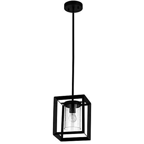 COTULIN Modern Glass Pendant Light, Single Light Metal Wire...