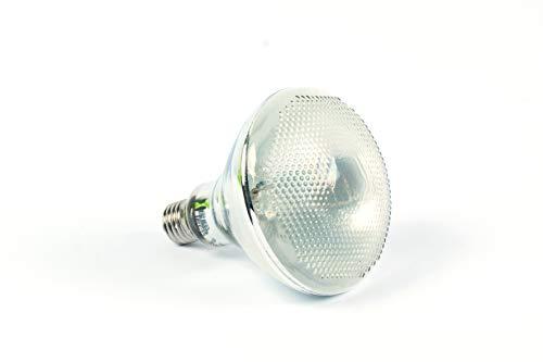 RepTech Lámpara de vapor Mercury D3 (100 vatios, UVA + UVB + calor)