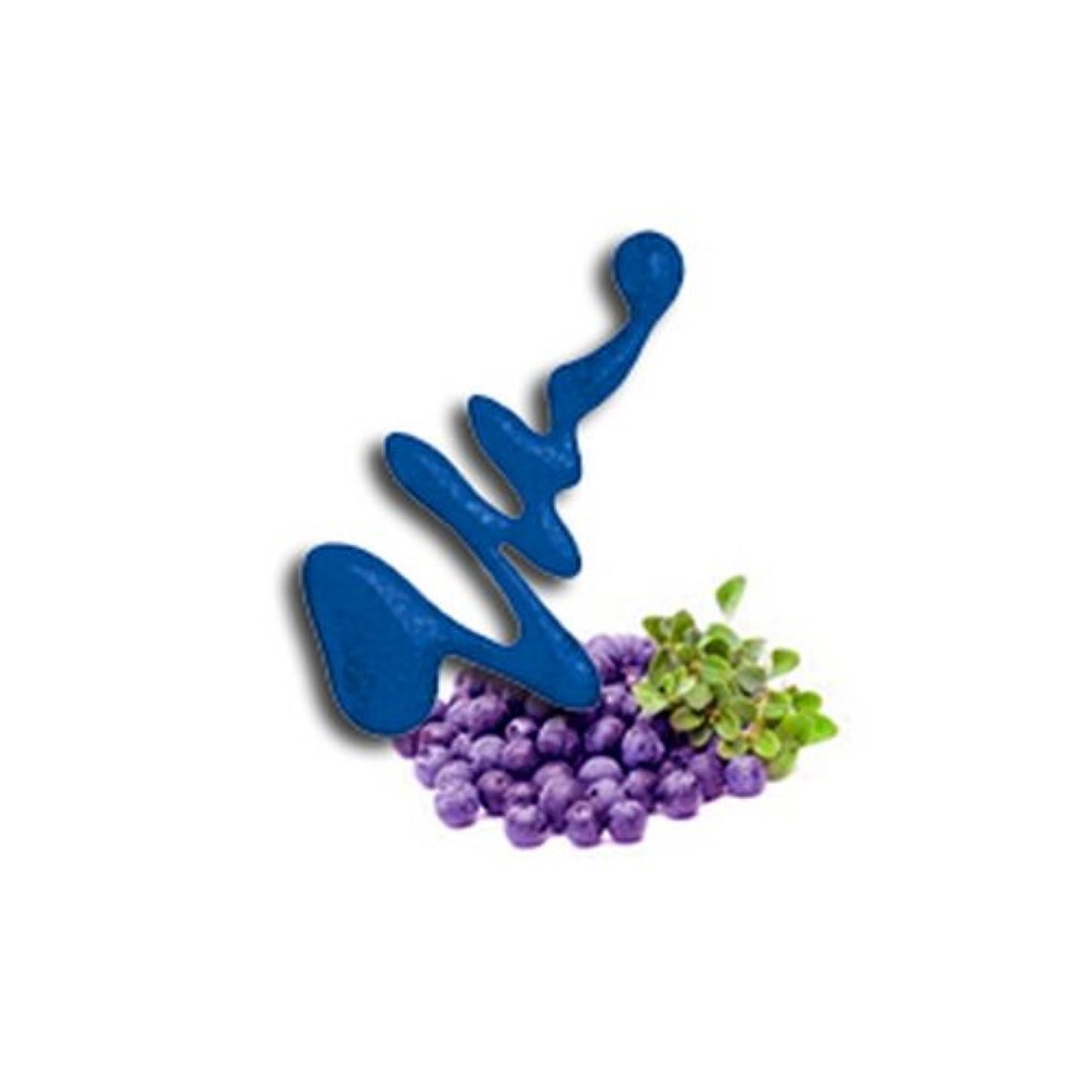 先見の明冷凍庫手配するLA GIRL Fruity Scented Nail Polish - Blueberry Fizz (並行輸入品)