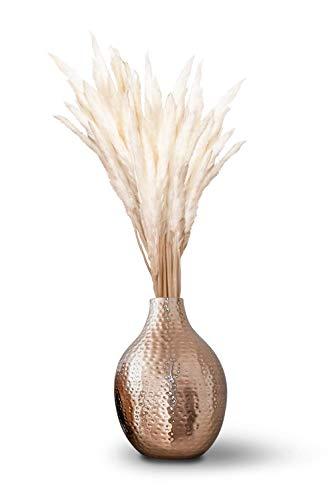 L\'un • getrocknetes Pampasgras • 70 bis 75cm • Weiß • 15 Stück • hochwertig, ökologisch & nachhaltig • schöne Deko im Boho-Style • tolles naturbelassenes Interieur Design