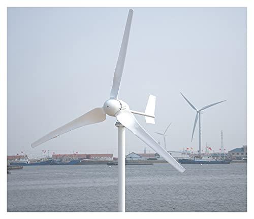 Aerogeneradores APROBACIÓN CE 1000W Eje horizontal El generador de turbinas eólicas para la tierra y la marina incluyen el regalo del controlador Energía solar y eólica