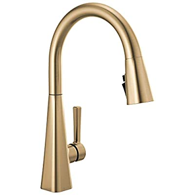Delta Faucet Lenta Single-Handle Kitchen Sink Faucet with Pull Down Sprayer and Magnetic Docking Spray Head, Champagne Bronze 19802Z-CZ-DST