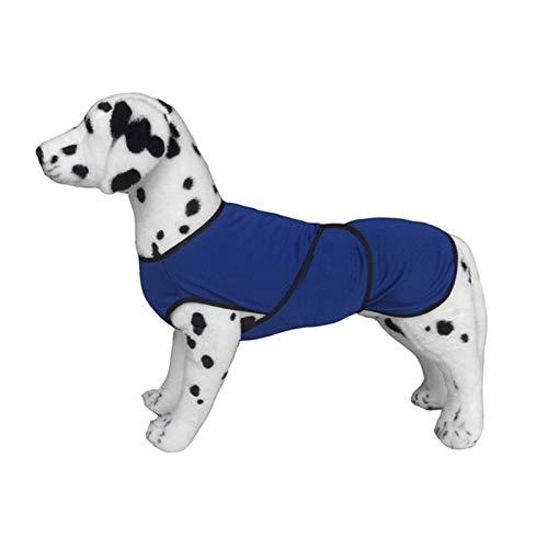 Pawhut Chaqueta Chaleco de Refrigeración Perro Ropa de Verano Chaleco para Mascotas Chaqueta Refrescante Perro Espalda 40cm Poliéster