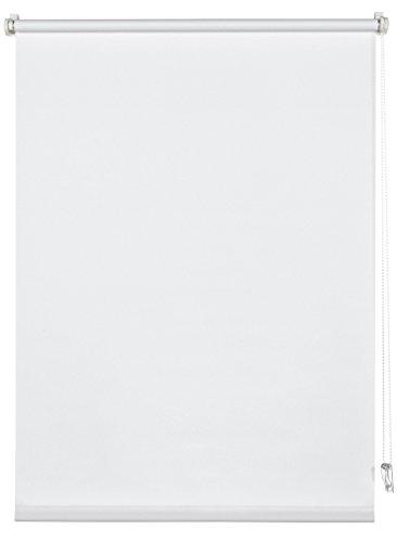 Deco Company Estor Enrollable para fijación con Clip, luz de día, Opaco, Todas Las Piezas de Montaje Incluidas, Color Blanco, 55 x 150 cm (Ancho x Alto)