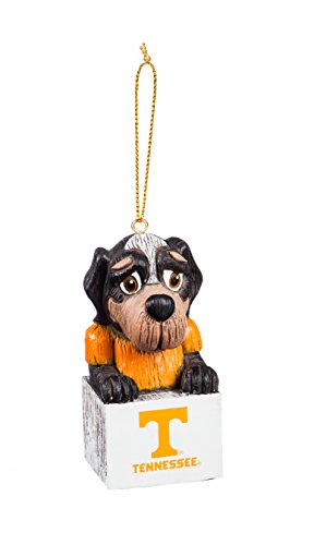 Team Sports America Tennessee Team Mascot Ornament