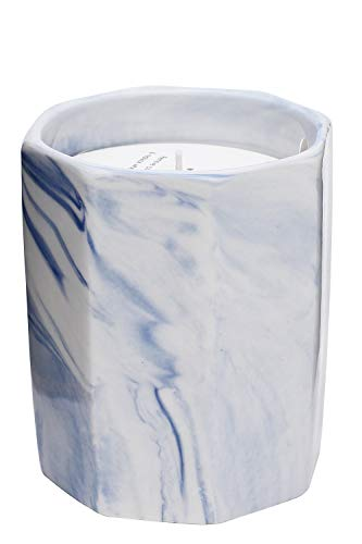 MOSISON Scented Candles , 8.11oz Ceramics Jar Candle ,Natural Soy Wax, Home Fragrance Decor Gift,Soy Luxury Candles(Blue Campanula)
