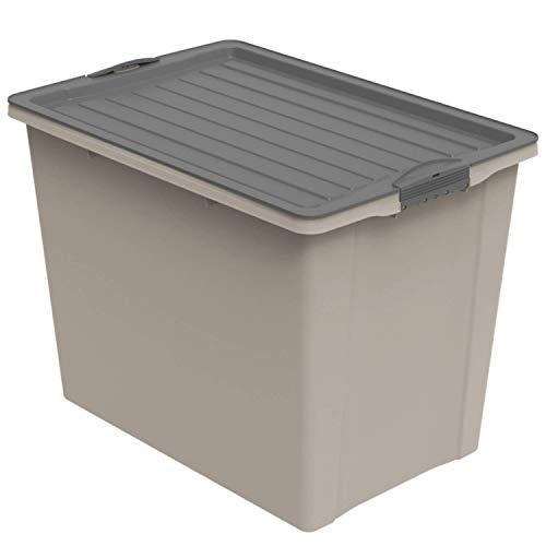 Rotho Compact, Caja de almacenamiento 70 l con tapa y ruedas, Plástico PP reciclado sin BPA, Marrón (Capuchino)