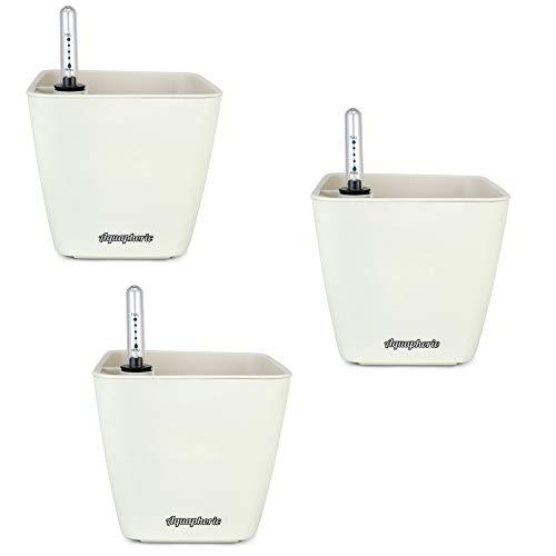 Window Garden Aquaphoric Self-Watering Mini Planter Pots