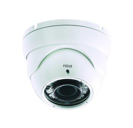 BTicino 391324 Telecamera Palla per Esterno, 2.8-10 mm, LED PAL