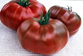 Amazon.es: semillas de tomate negro
