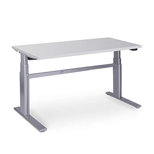 Dila GmbH Ergonomischer Schreibtisch elektrisch höhenverstellbar | höhenverstellbarer Bürotisch Workstation Arbeitstisch Bürotisch Büromöbel (140 x 80 cm, Lichtgrau)