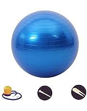 DAZISEN Exercise Ball - Portable Anti-burst Yoga Pilates Ball (45 Tot 95 Cm) Ondersteunt 50 Tot 200 Kg Voor Vrouwen, Kit Fit, Yoga, Zwangerschap (rood, Blauw, Paars, Roze, Zilver)