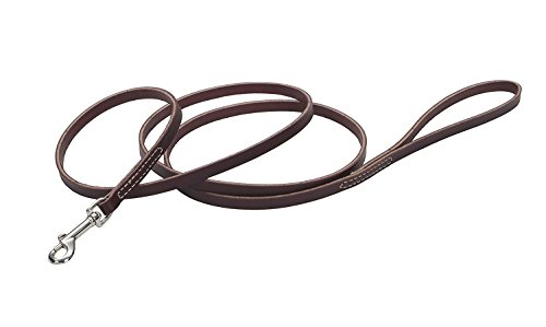 Coastal Pet Products DCP2064 1/2-Inch by 6-Feet Leather Circle T Latigo Dog Leash with Nickel Plated Snaps