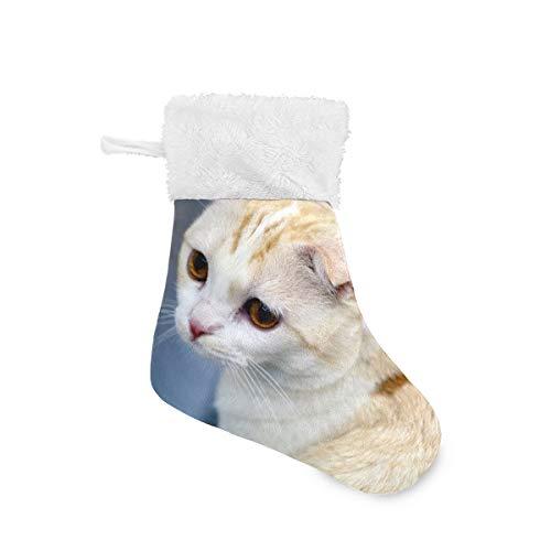 LENNEL Juego Personalizado de Calcetines navideños de 4 para Vacaciones Familiares Decoración de Fiesta de Navidad Regalo Peluche Gorro de Piel sintética Gatos Scottish Fold White