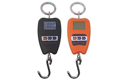 BES 23279 digitale weegschaal, professioneel, industrie, dynamometer Molla, 200 kg