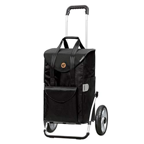 Royal SENTA - Carro de compra desmontable y plegable con dos ruedas