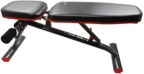 HulkFit Adjustable and Foldable Utility Weight Bench for Upright, Incline, Decline, and Flat Exercise (Regular)