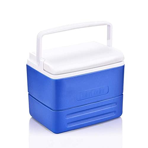 FHISD Nevera eléctrica, portátil, médico, portátil, refrigeración, fácil de Llevar, Caja de...