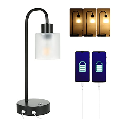 Tomshine Retro Touch Bedside Table Lamps with 2 USB Charge Port,Industrial Style Dimmable Nightstand Light for Bedroom Living Room Lounge,Bulb Included