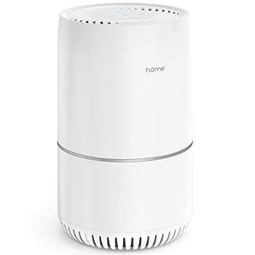 hOmeLabs True HEPA Filter Air Purifier - Portable for Home, Bedroom or Office - for Small to Medium Size Spaces up to 57.5 Square Feet