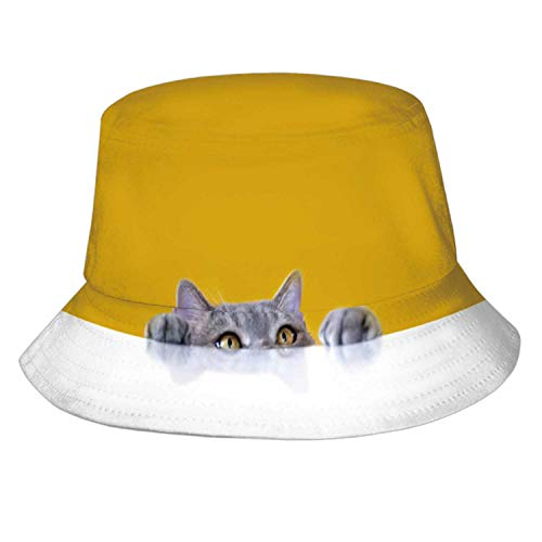 Bigeyed Naughty Obese cat Looking at The Target.British sort Hair cat.Turkey Middle East,Mens Womens Summer Bucket Hat - Sun Hat Packable Vacation Hat Domestic Cat