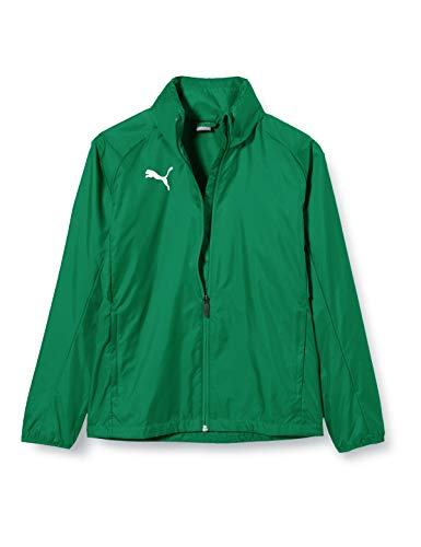PUMA Kinder LIGA Core Training Rain Jacket, Pepper Green White, 128