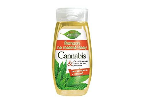 Bione 100% Bio - Vegan Shampoo gegen fettiges Haar mit Cannabis-Extrakte & Keratin & Lecithin & Panthenol ohne Mineralöl, Silikone, Parabene, SLS!