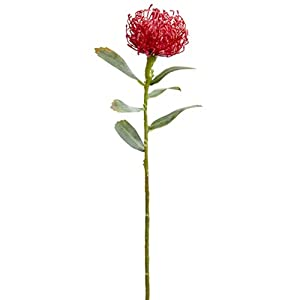 21″ Protea Silk Flower Stem -Red (Pack of 12)