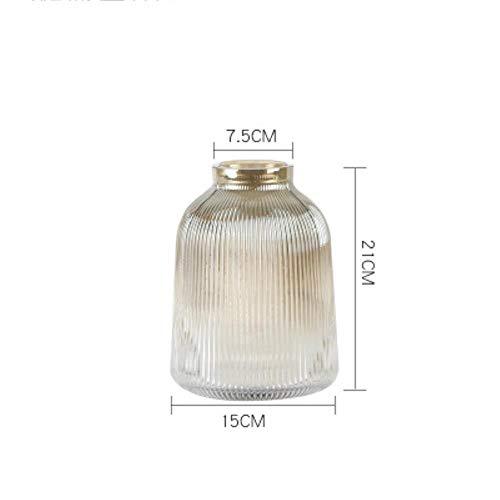 XCVB Glasvase Transparente Vasen Home Wohnzimmer Blumen Hydroponikbehälter Trockenhalter Nordische Dekorationsflasche, H.