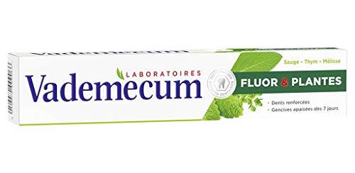 Vademecum Fluor Zahnpasta Und Pflanzen Salbei Thymian Mã © Glatte 75ml (Satz 4) 1