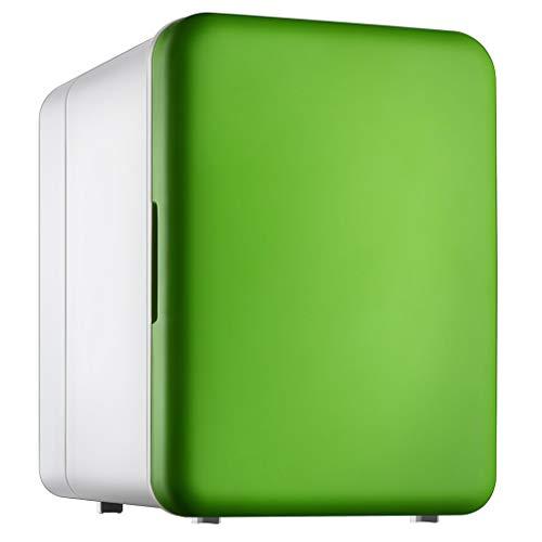 BLLXMX Mini refrigerador, 4L Refrigerador del refrigerador del Coche Caja fría Refrigerador eléctrico termoeléctrico portátil para Camiones Refrigeración doméstica