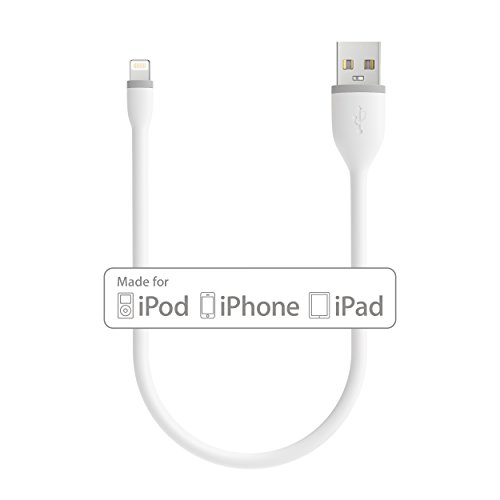 Satechi Flexible Apple MFi Certified Lightning USB Charging Cable - Compatible with iPhone 11 Plus Max/11 Plus/11, Xs Max/XS/XR/X, 8 Plus/8 (10-Inch, White)