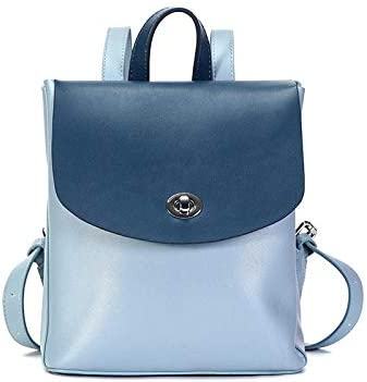 JMXAFMY Women Leather Backpack Fashion Large Capacity Anti-Theft Backpacks Ladies Casual Travel Bag (Color : Blue, Size : A)