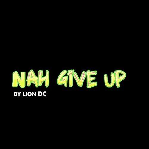 Lion DC