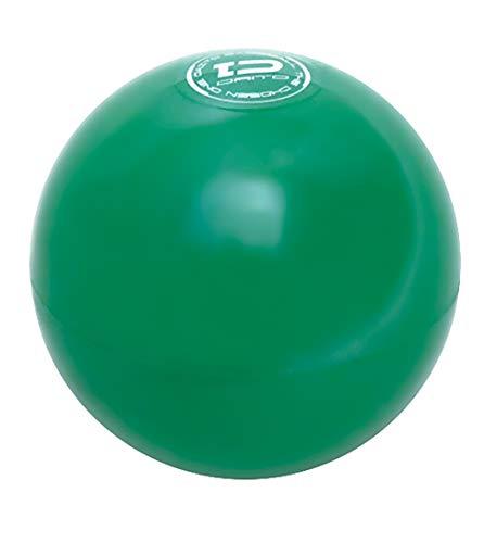 ダイトベースボール サンドボール 打力強化 パワーアップ トレーニング 350g 1ダース
