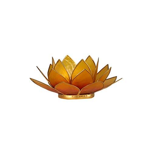 Lotuslicht orange