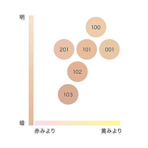 IPSAイプサリテクスチャリングファウンデイション100
