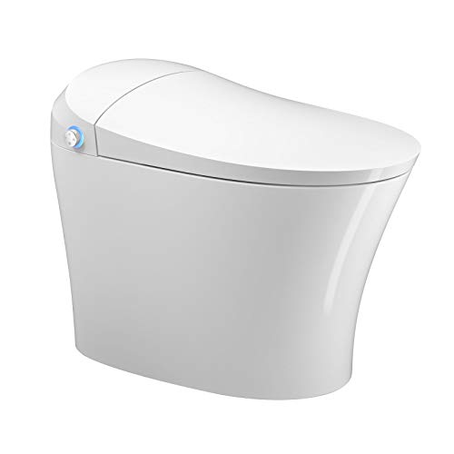 Mecor Intelligent Smart Toilet, Massage Washing, Auto Flush,Heated Seat with Integrated Multi Function Remote Control, With Advance Bidet And Soft Closing Seat,Smart Bidet(TA-832DF)